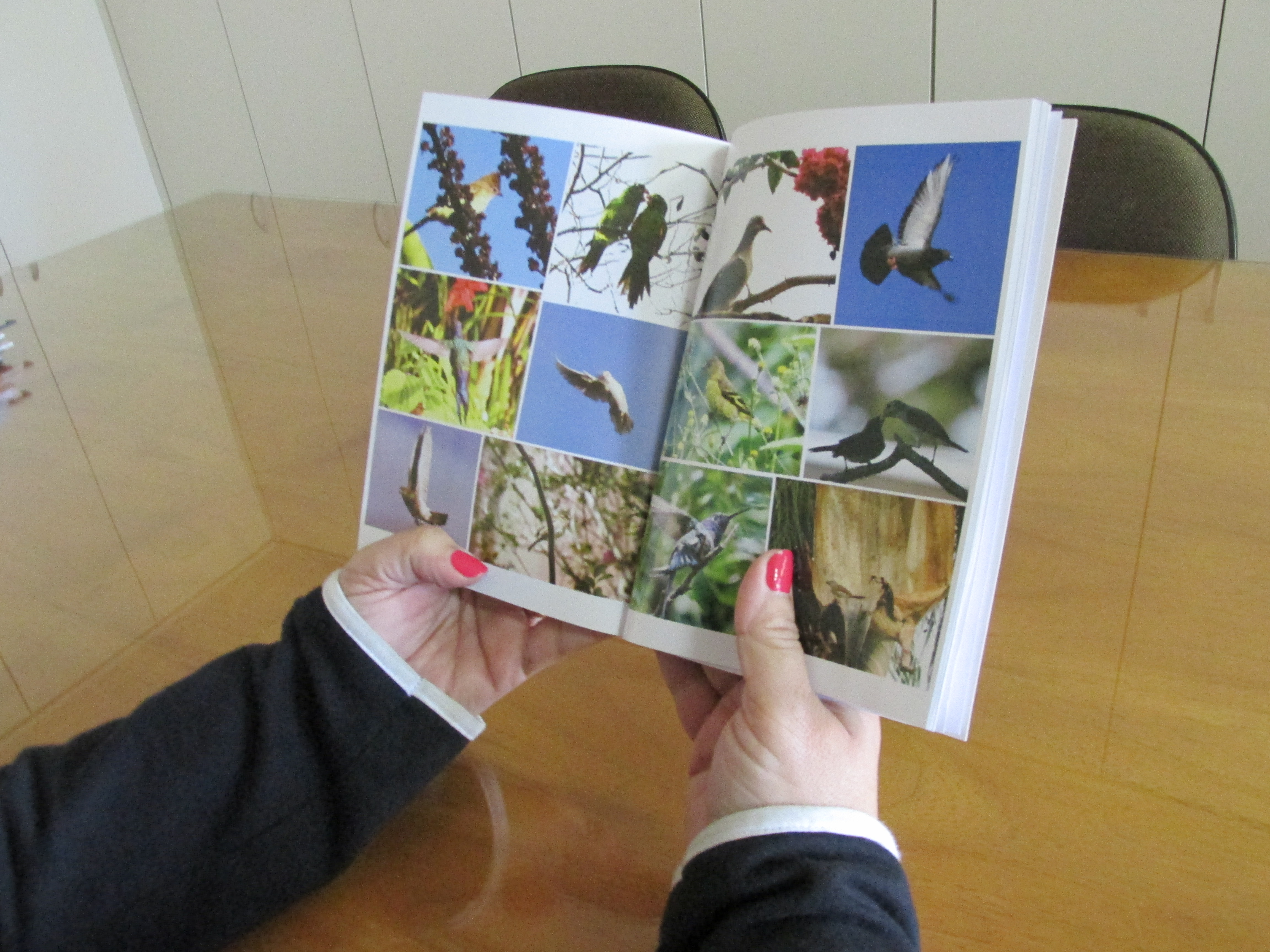 """Lançamento do livro: """"Entre Rosas e Espinhos, eis o caminho!"""" será na sexta (23), em Botucatu"""