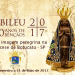 Arquidiocese receberá imagem peregrina de Nossa Senhora Aparecida em 2017