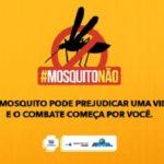357 municípios do país apresentam risco para dengue, zika e chikungunya