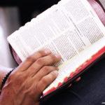 Setembro: Acompanhe as iniciativas da Arquidiocese para o Mês da Palavra de Deus
