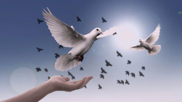 """Dia Mundial da Paz: """"A boa política está ao serviço da paz"""""""