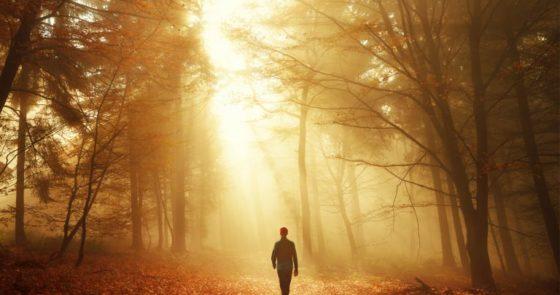 O plano de Deus não é predestinação