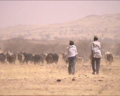 O Papa solidário às populações do Sahel provadas pela seca