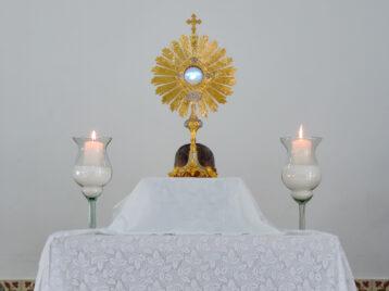 Arquidiocese celebra Dia do Catequista com live especial